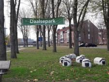 Bouwen of groen, dat blijft de vraag voor het Daalsepark