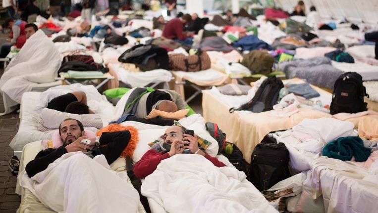 Vluchtelingen liggen op bedden te rusten bij een tijdelijk onderkomen voor asielzoekers op een festivalterrein in het Oostenrijkse Wiesen. Beeld afp