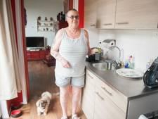 l'Escaut ziet Vlissingse Rooie Buurt als visitekaartje