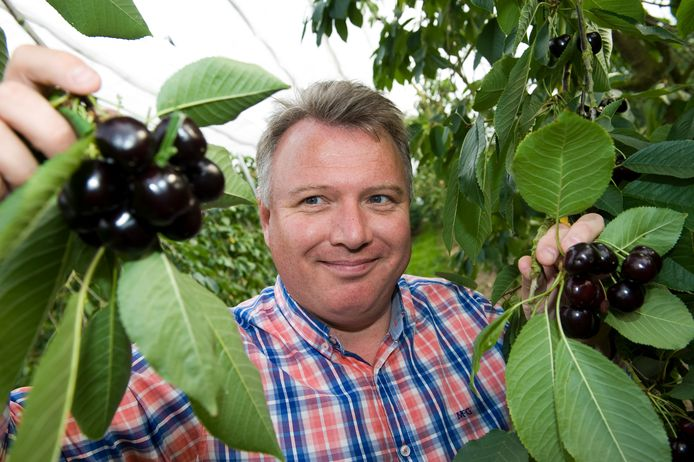 Aart Blom in zijn boomgaard in Wadenoijen.