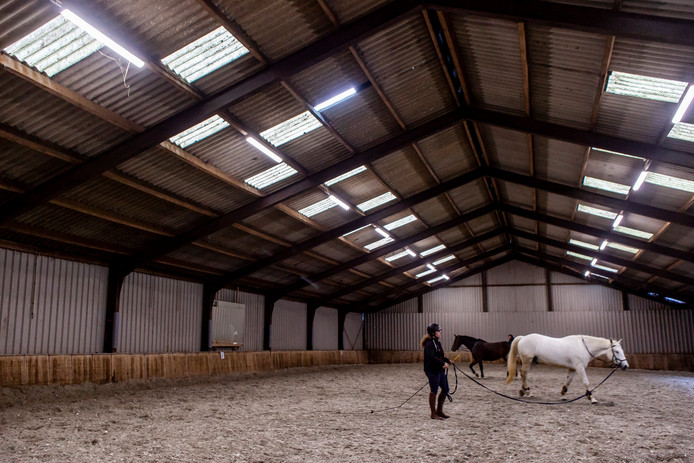 De Hollandsche Manege.