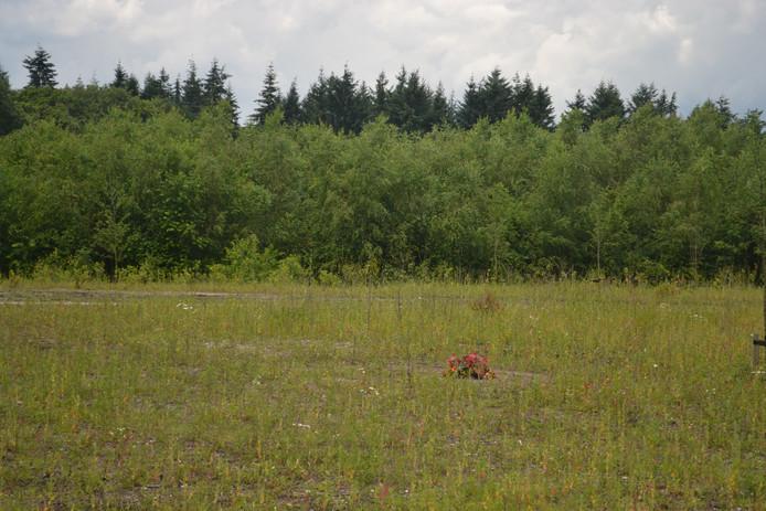 Een van de eerste natuurbegraafplaatsen in Maashorst.