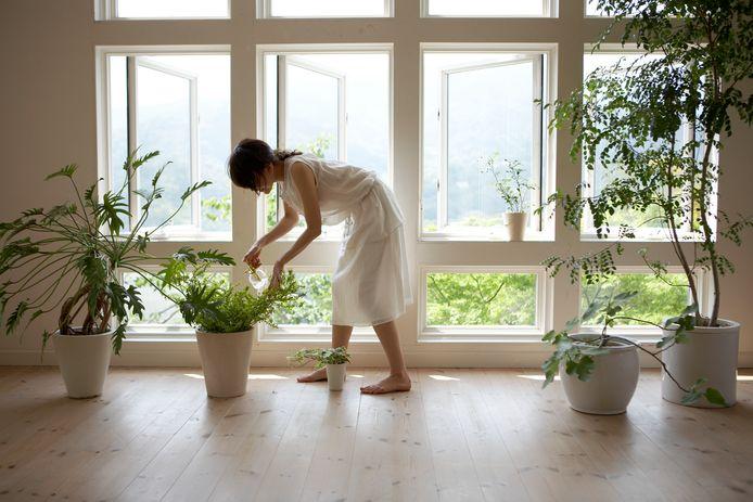 Tuinieren in potten kan prima als je geen tuin hebt.