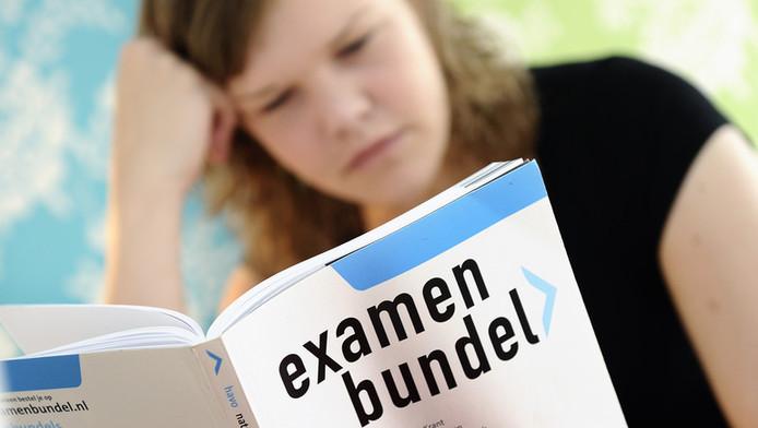 Een HAVO-leerling die zich voorbereidt op haar eindexamen.