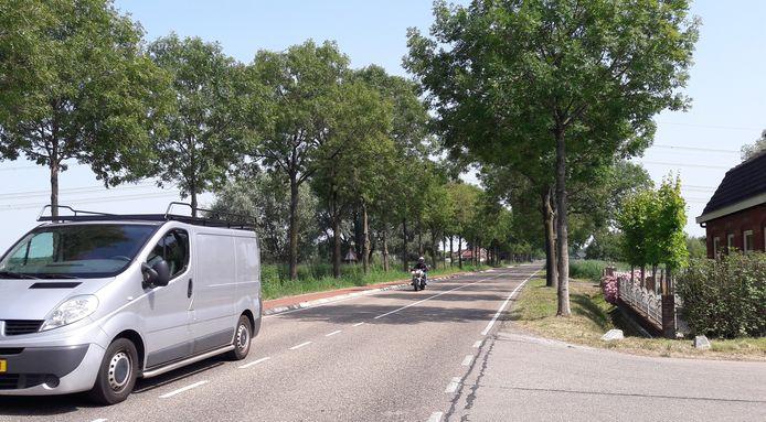 Auto's en motoren op de Tholenseweg bij Halsteren, waar 60 per uur als maximum geldt, halen volgens verontruste buurtbewoners snelheden boven de 100.