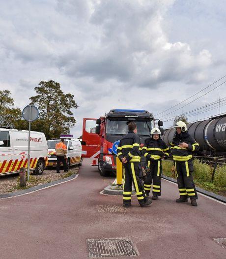 Nieuwsoverzicht | ProRail onderzoekt brand in goederentrein - Botsing op snelweg door overstekende hond