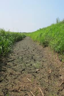 Waterschap of klimaatschap?