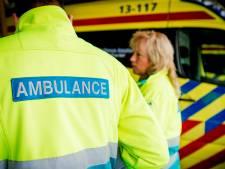 Fietser omgekomen bij aanrijding Rotsterhaule