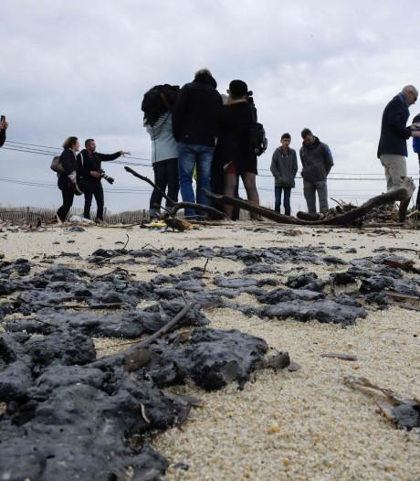 Het strand van Brigitte Bardot zit onder de olie