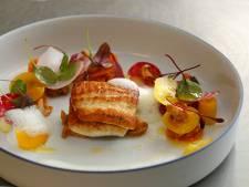 Michelinster voor De Rozario in Helmond, Eindhovens restaurant raakt ster kwijt
