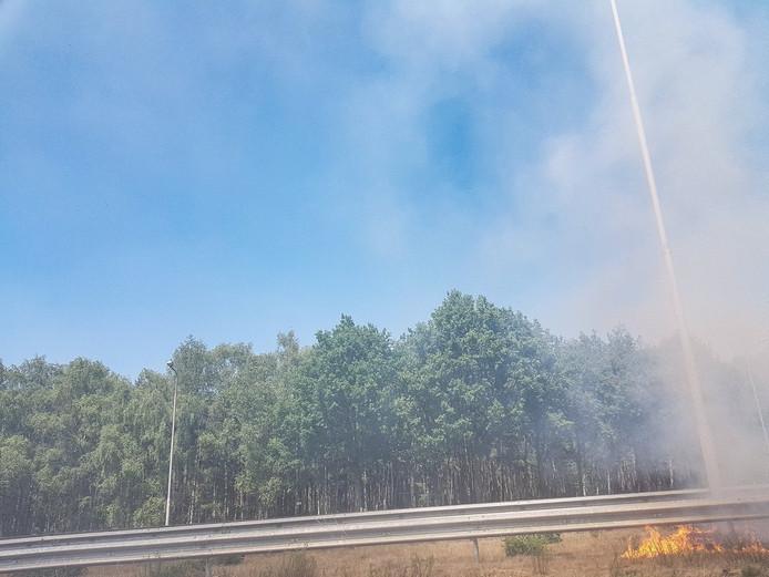 Bermbrand A58 tussen Gilze en Tilburg.