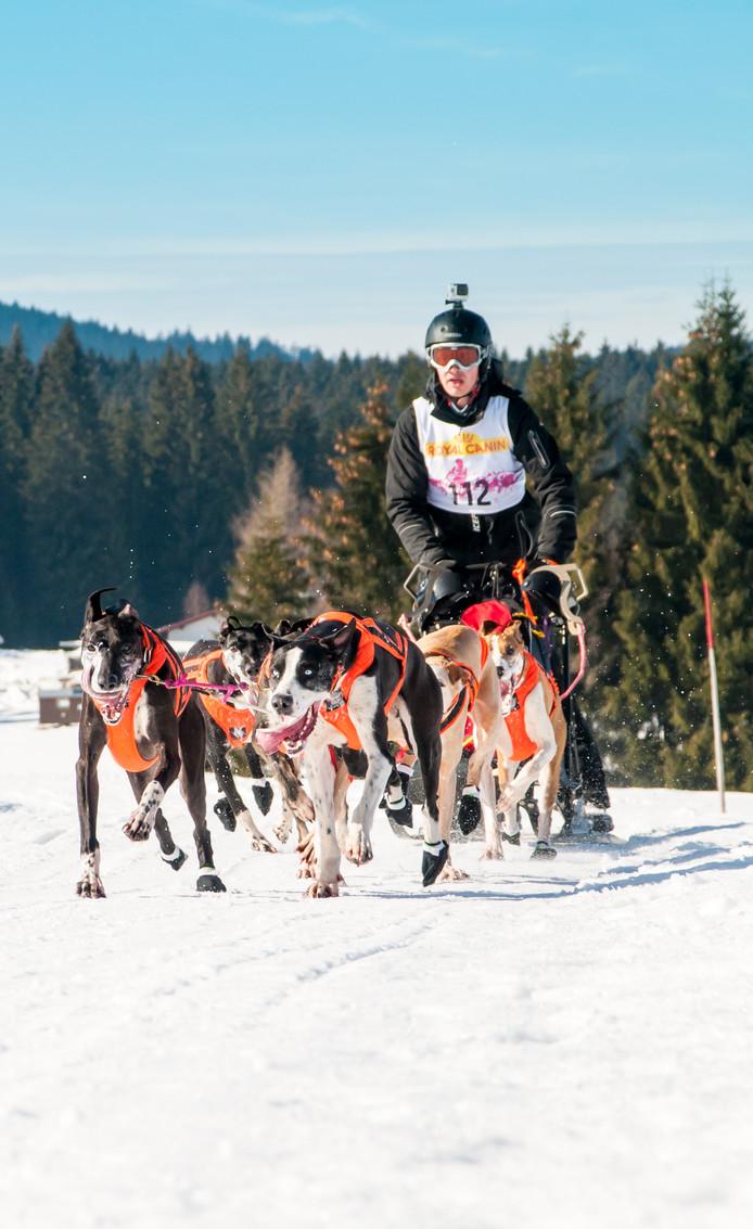 Stefan Donker in actie tijdens een eerder gehouden wedstrijd.  Foto Rob Mossinkoff
