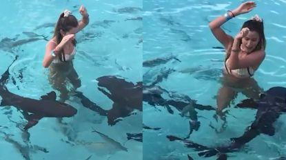 Meisje raakt in paniek tijdens zwempartij met haaien