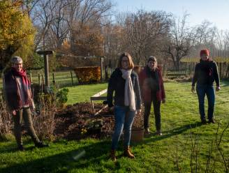 Breng meer kleur in je tuin: Velt Wetteren toont in primeur 'zadenruilkist' op zondagsmarkt