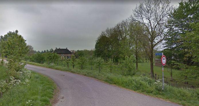 Zicht op een deel van de Rijndijk bij Lienden. Foto ter illustratie.