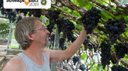 """Schuimwijn uit de Druivenstreek van Wijnkelders Soniën: """"Zelfs in de Champagnestreek werken ze niet meer op de traditionele wijze, wij wel nog"""""""