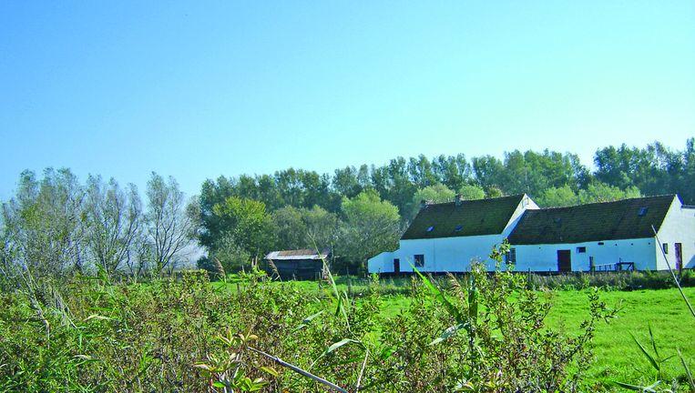 De polders van Knokke-Heist.