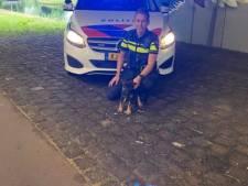 Puppy Hyke is de nieuwe collega van de Schiedamse wijkagenten