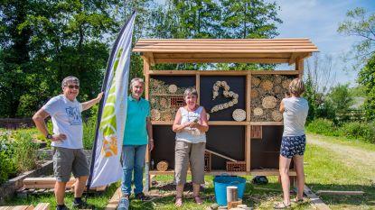 Gemeente plaatst bijenkast aan vlindertuin langs Donkmeer