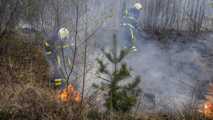 Brandstichter (16) van bosbrand in Den Hout belt zelf 112