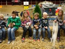 Konijnen, cavia's en sierduiven: de jongdierendag van De Eendracht uit Rijssen mag toch doorgaan