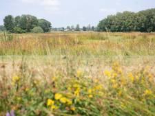 Afgraven bodem op Zunasche Heide moet zeldzame planten meer kans geven