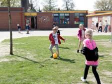 Elf Overijsselse scholen in finale 'groenste schoolplein'