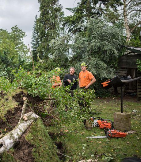 Te gevaarlijk na weer een storm: Nationaal Park Veluwezoom afgesloten