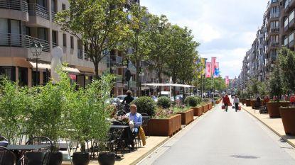 Stijlvolle terrassen, groen en street art brengen sfeer en gezelligheid in Lippenslaan en Kustlaan