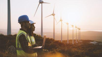 Deze netbeheerder ontwikkelde het project Bidladder om zo de ontwikkeling van de elektriciteitsmarkt te bevorderen