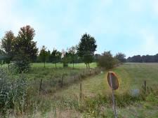 Onderzoek naar flora en fauna op golfbaan Bunnik
