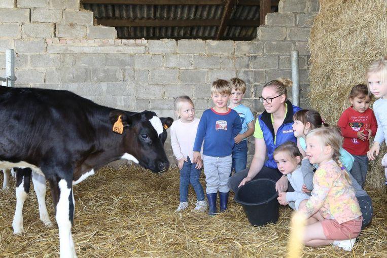 Een echte koe ontmoeten of leren hoe een maïskolf groeit: er is die mooie leeftijd waarop het allemaal nog onontdekt is.