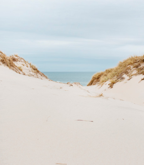 Comment les dunes communiquent-elles entre elles?