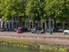 Petitie tegen kap van 23 oude linden rondom Oude Haven in Zierikzee