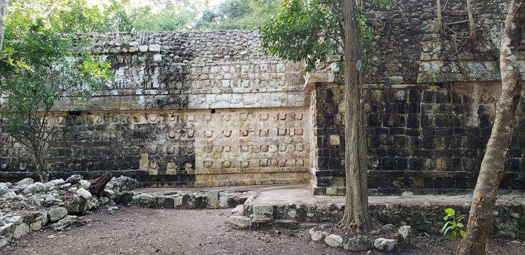 Een deel van het gevonden en al schoongemaakte Maya-paleis.