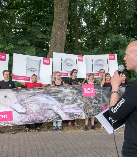 Animal Rights hekelt Ermelose slachterij om 'hittedood' honderd eenden