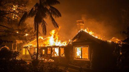 """""""Dodelijkste bosbranden in  geschiedenis van Californië"""": al 44 doden en honderden vermisten"""