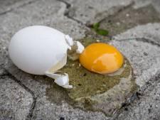 Jongeren bekogelen auto met eieren in Enschede, bijrijder pijnlijk geraakt