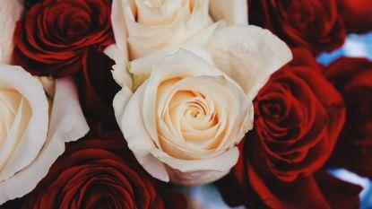 SOS Goedele:  zo haal je toch je voordeel uit valentijn
