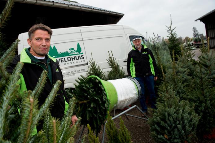 Kwekerij en Hovenier Veldhuis uit Vaassen zou vanaf zaterdag beginnen met de verkoop van kerstbomen bij de Karwei in Apeldoorn. Links Egbert Veldhuis en rechts vaste verkoper bij Karwei Aart Pannekoek.