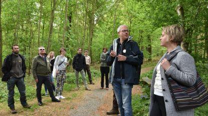 Natuurcoach laat je bos weer door bomen zien