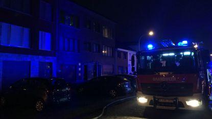 Twee katten blijven in brand in appartement in Wilrijk