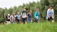 Ros Beiaardrunners organiseren natuurwandeling voor goed doel