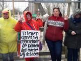 Actievoerders roeren zich na besluit afschot edelherten Oostvaardersplassen
