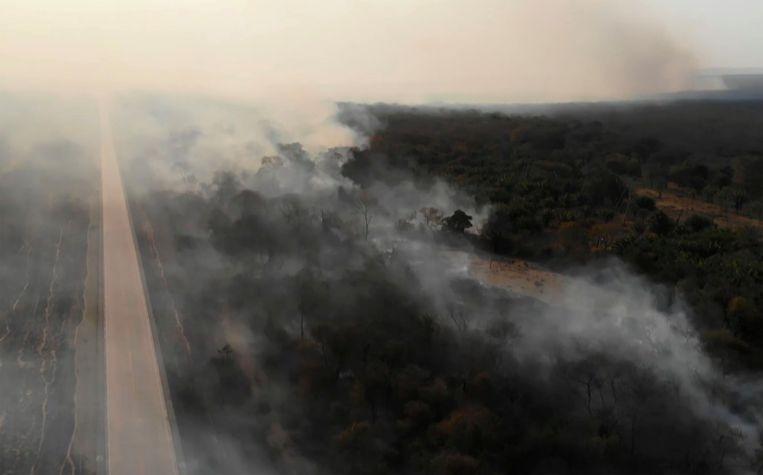Dit jaar zijn bijna 73.000 branden waargenomen in het Amazoneregenwoud. Beeld AFP