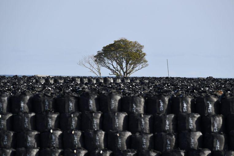 Duizenden zakken met radioactief verontreinigde grond staan te wachten op verwerking. Beeld epa