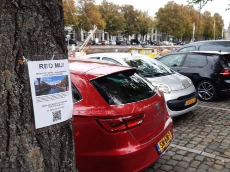 Beter laat dan nooit: bewoners krijgen iets te zeggen over bomenkap rond Oude Haven