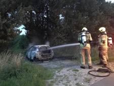 Auto in polder bij Waarde brandt compleet uit