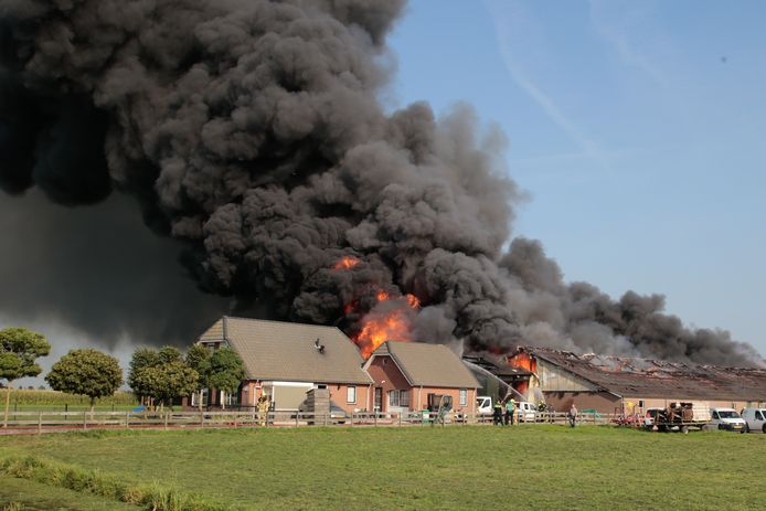 Grote brand in varkensschuur Streefkerk.