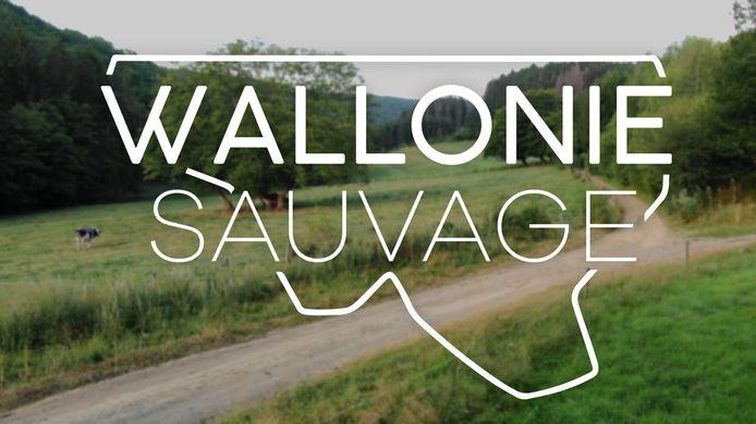 """Retrouvez """"Wallonie Sauvage"""" le samedi 26 septembre à 19h50 sur RTL-TVI."""